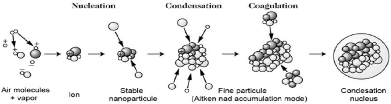 Possible Path of Evolution of a Particle, from Nucleation to Coagulation